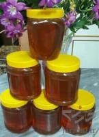 فروش عسل طبیعی کردستان عمده و جزئی