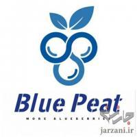 بسترکشت بلوبری بلوپیت BluePeat
